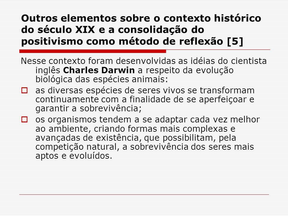 Outros elementos sobre o contexto histórico do século XIX e a consolidação do positivismo como método de reflexão [5]
